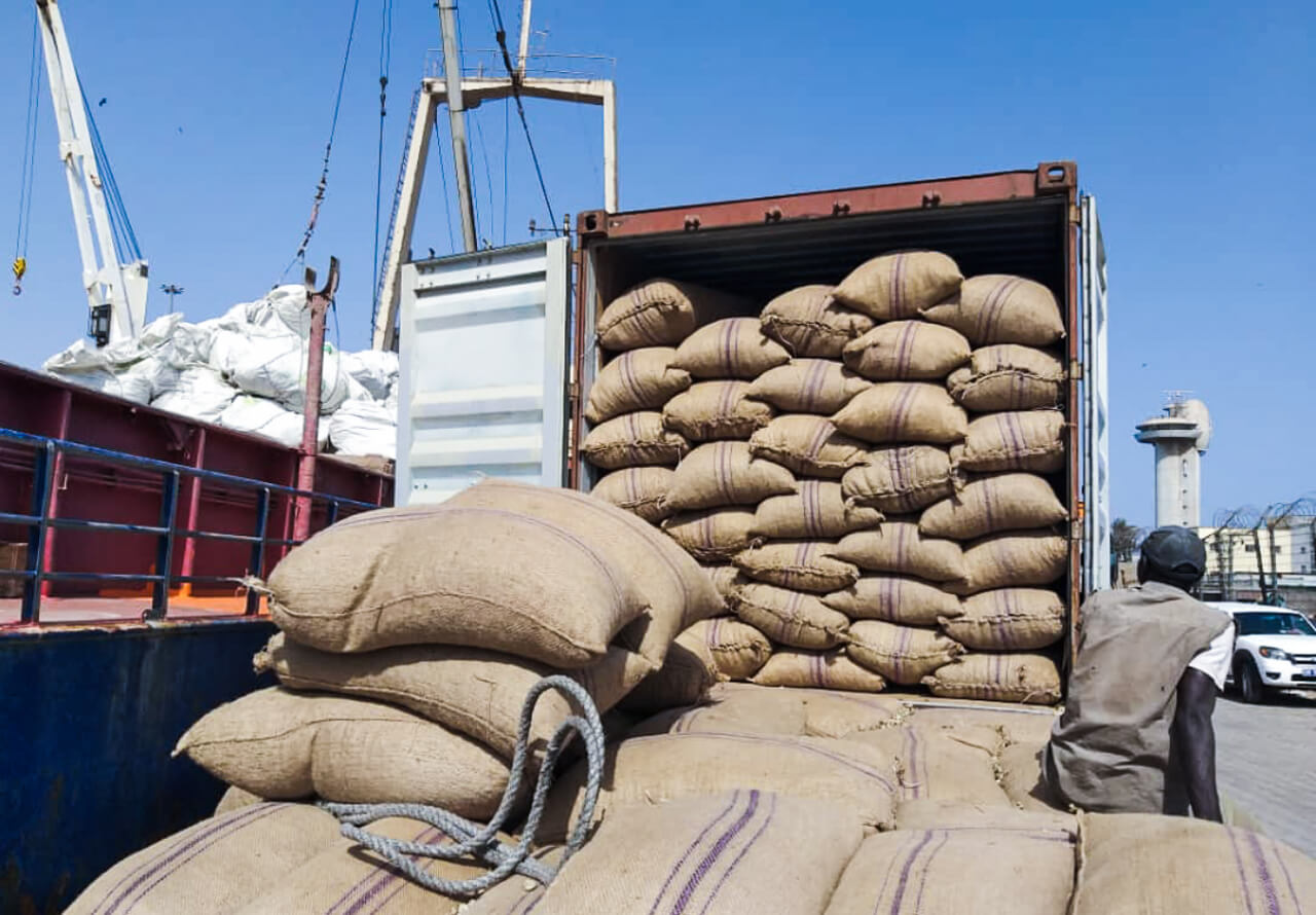 Lots of cashews in big bags at the temporary storage facility in Ziguinchor